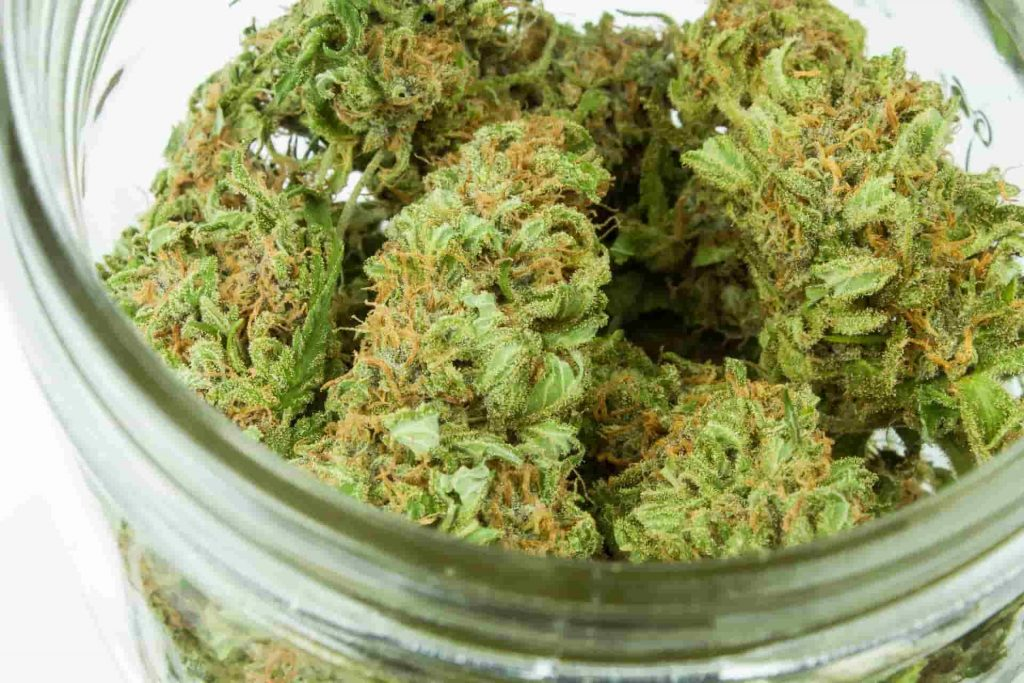 Top Cannabis Strains to Overcome Fears